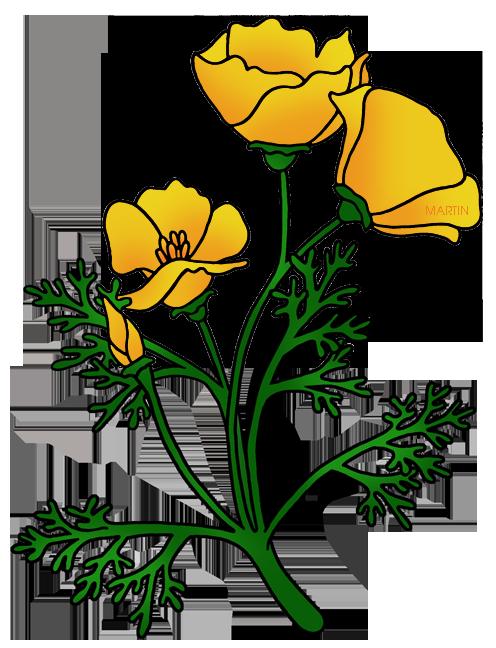 United states clip art by phillip martin california state flower california state flower golden poppy mightylinksfo Gallery