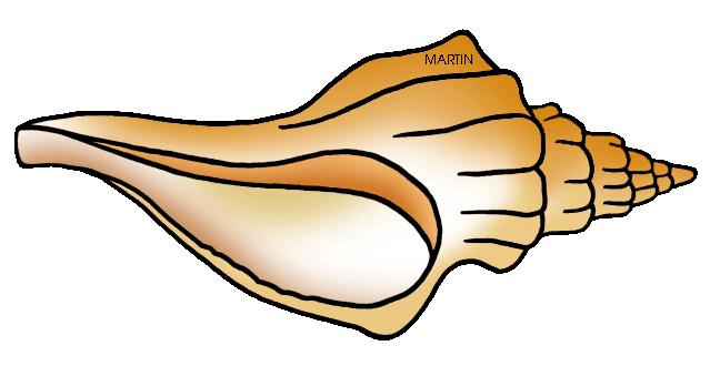 united states clip art by phillip martin florida state shell rh states phillipmartin info Nautilus Shell Clip Art Sea Shell Clip Art