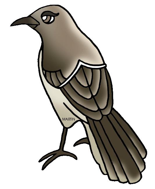 State Bird Of Mississippi Mockingbird