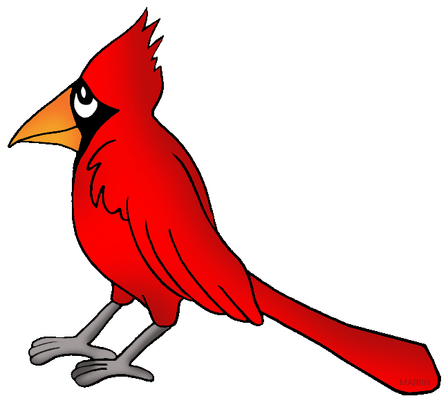 north carolina state bird cardinal