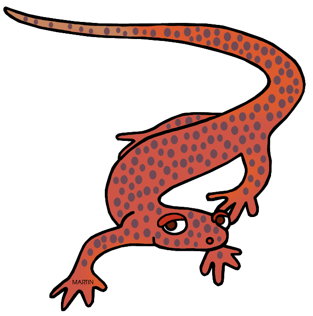 united states clip art by phillip martin tennessee state amphibian rh states phillipmartin info  salamander clipart