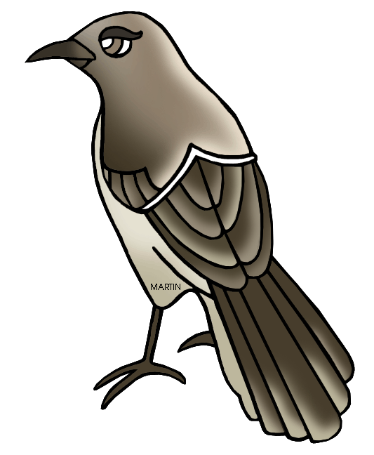 texas state bird mockingbird