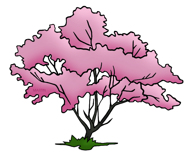united states clip art by phillip martin virginia state tree rh states phillipmartin info dogwood tree clipart pink dogwood clipart
